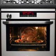 Will police arrest anyone for burglarize home & putting  dog dead body in the oven?