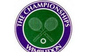 Wimbledon: Who will win the men's singles?